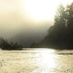 Kathy Theobald Foggy Sunrise - 3rd